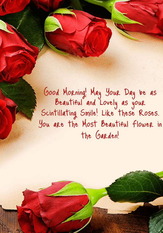 Good Morning May Your Day Be As Beautiful And Lovely As Your